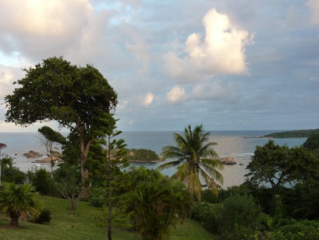 View from our cottage in Dominica