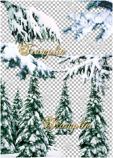 Еловые ветки в снегу - Снежок порхает, кружится, на улице бело