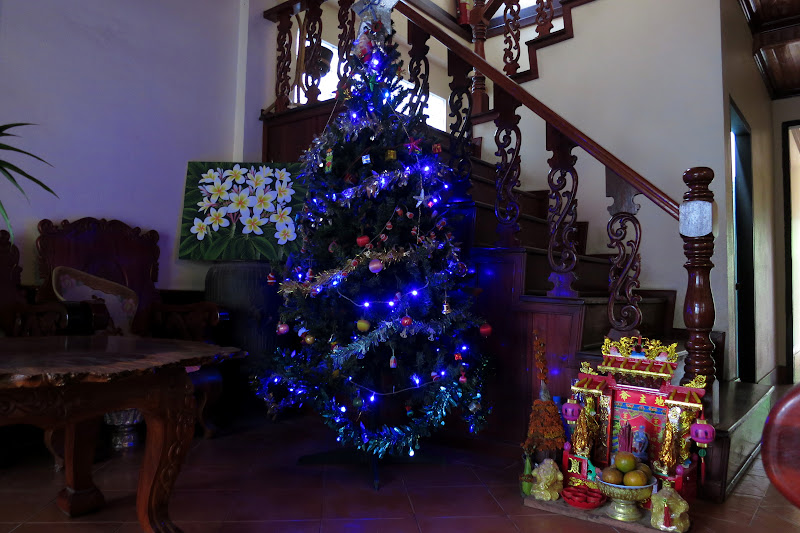 Jaliya Christmas tree