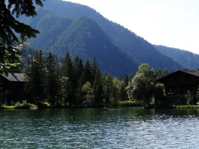 passeando - Passeando pela Suíça - 2012 - Página 9 DSC02263