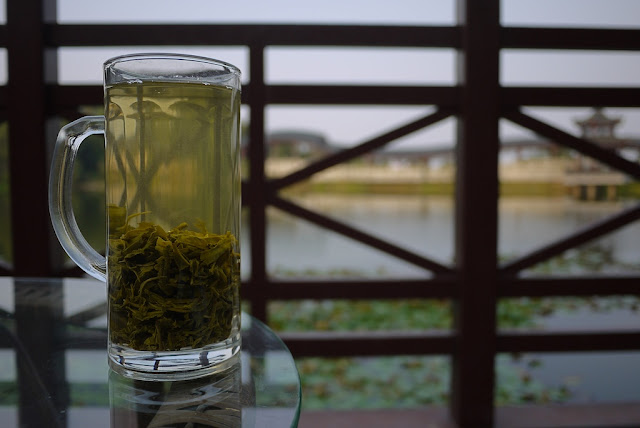 glass of green tea at Chuan Shipo Lake (穿石坡湖) at Yuelu Mountain (岳麓山) in Changsha, China