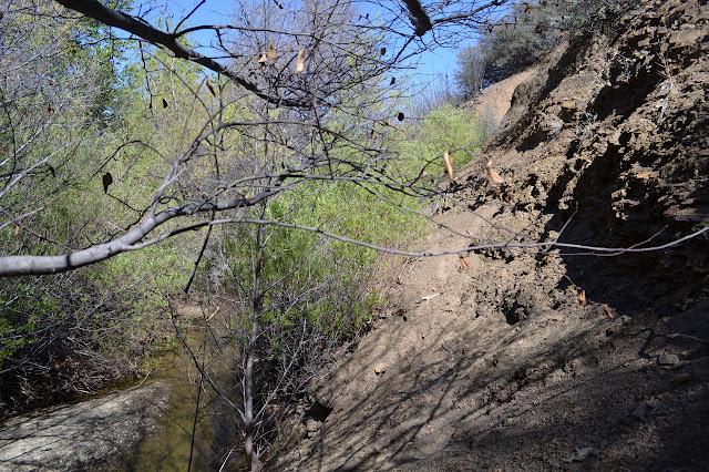 trail through the shale debris