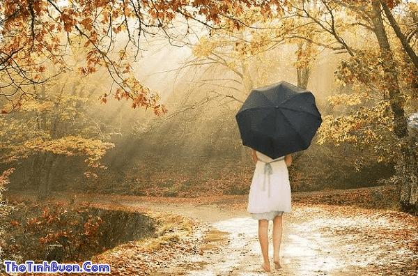 Những bài thơ tình buồn Mùa Thu chia ly, cô đơn hay nhất
