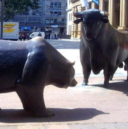 Bear Bull Photo 6