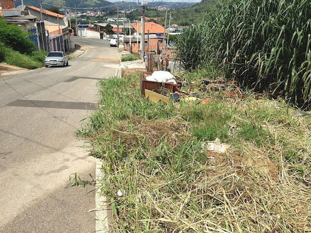 Vereador pede limpeza em via pública do Jardim Marieta