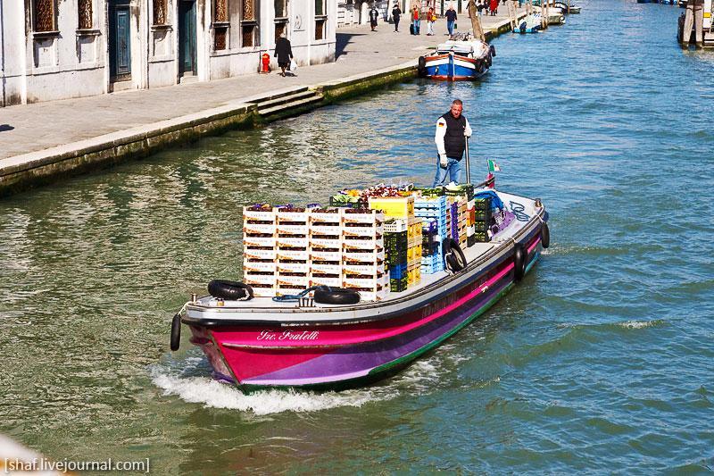 http://lh4.googleusercontent.com/-_aDeQHzRIJo/S9yVfmOVcvI/AAAAAAAATfQ/PxVptKWy7Wg/s800/20100412-085944_Venice.jpg