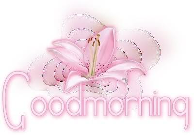 goodmorning-vi.jpg?gl=DK