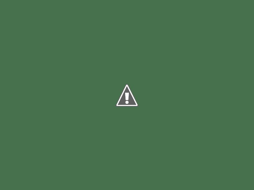 Avis camping municipale de Lapeyrouse ( 63) P1110685