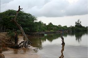 Delta del Sine-Saloum