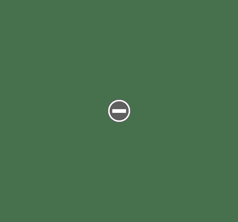 Rasoir RAP Allemand IMG_1647%2B%28Custom%29