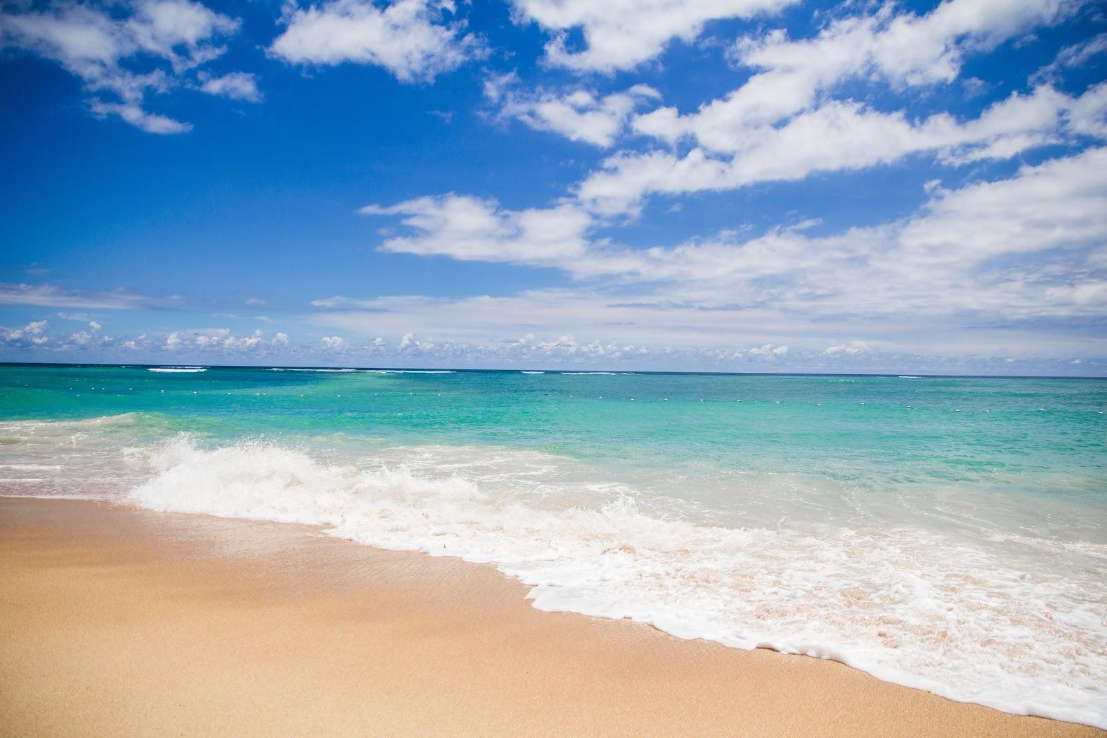 https://images.pexels.com/photos/459556/pexels-photo-459556.jpeg?cs=srgb&dl=background-beach-beautiful-459556.jpg&fm=jpg