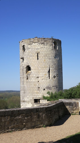 Tower at Chinon