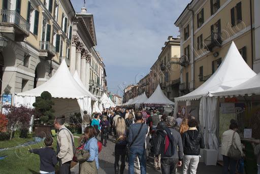 Fiera Nazionale del Marrone 2012 Cuneo