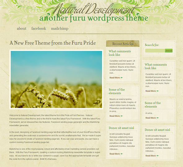 Natural Development Organic WordPress Theme