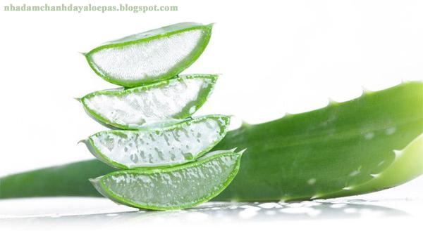 Chuyên bán sỉ và bán lẻ nước uống Nha Đam Chanh Dây ALOEPAS giá tốt nhất