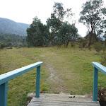 Small bridge near Bullocks Flat (295089)