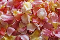 πέταλα λουλουδιών