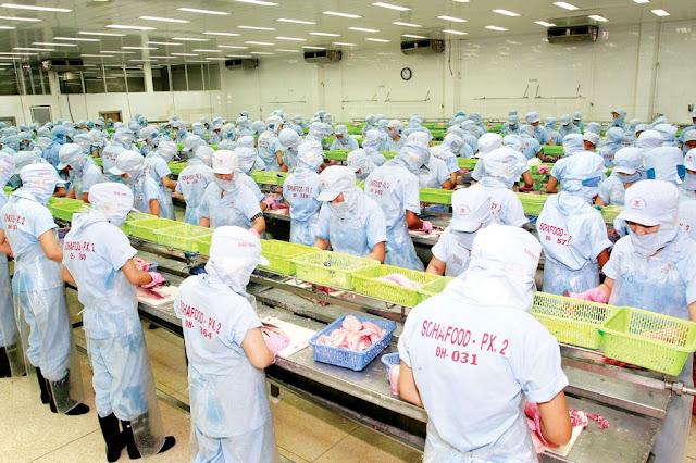 Đơn hàng chế biến thủy sản cần 78 nữ làm việc tại Hokkaido Nhật Bản tháng 09/2017
