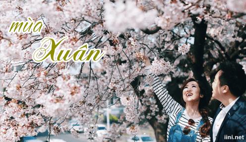 Thơ 8 chữ về Mùa Xuân