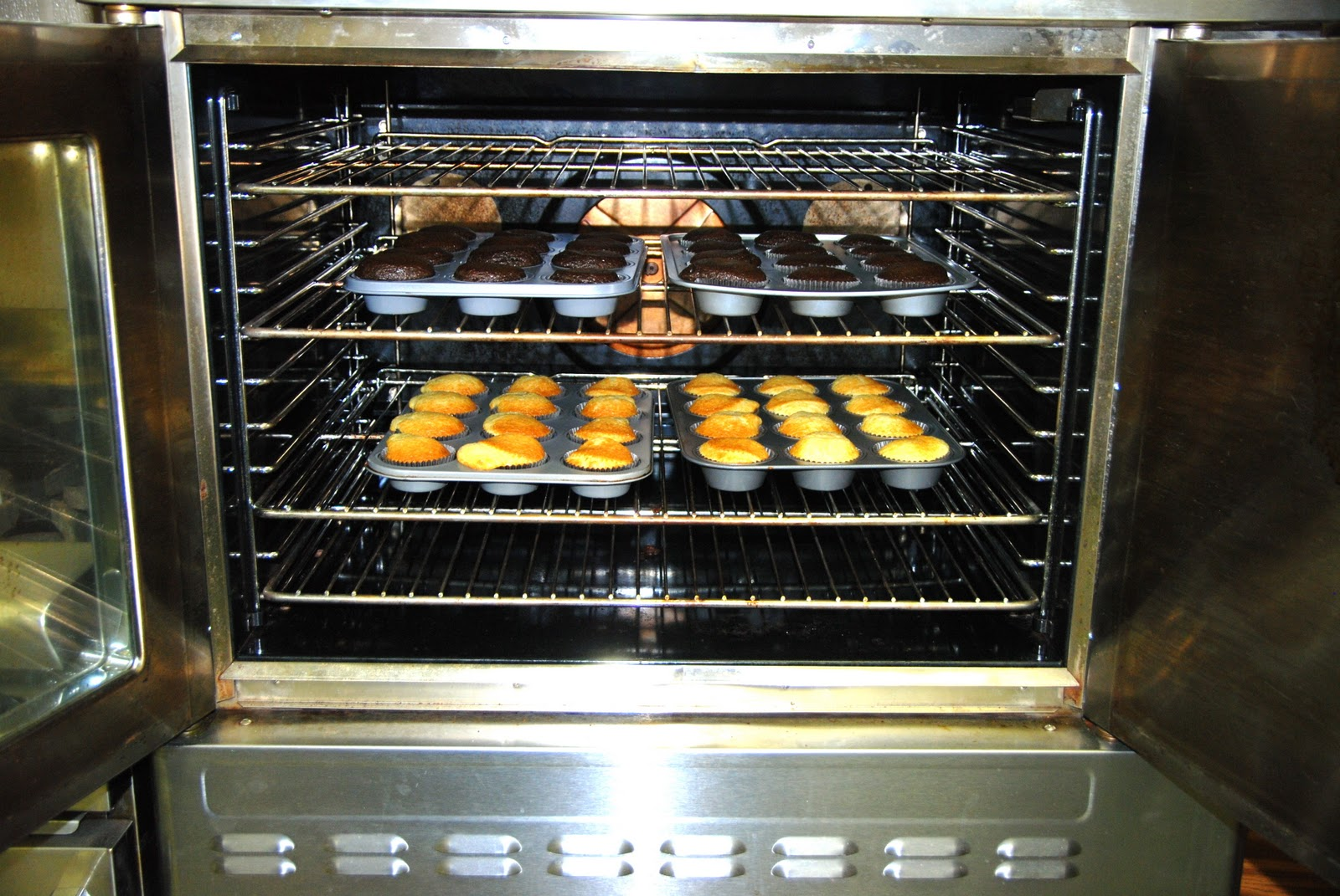 Cake In Oven ~ Convection oven for baking cakes