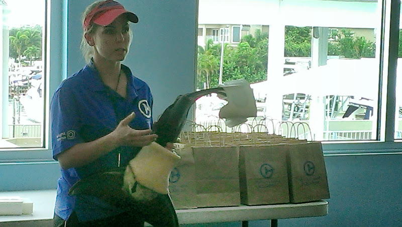 IMAG6329 A Dolphin Tale 2 Experience at Clearwater Marine Aquarium: #WinterHasHope