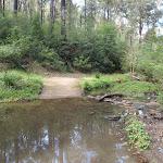 Creek crossing in Lane Cove Valley (64205)