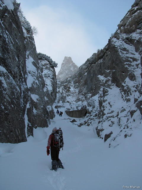 Valea Mălinului, foto Marius