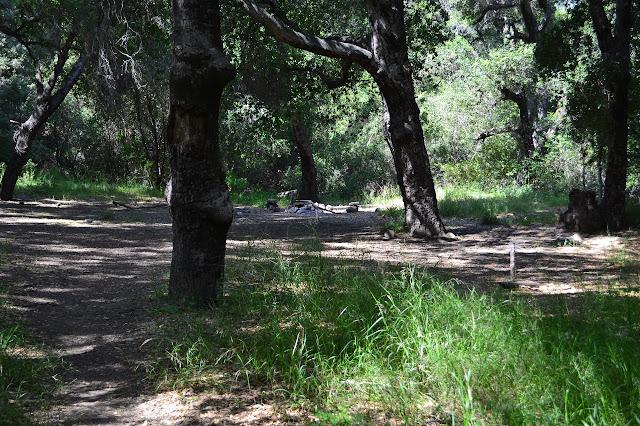Murietta Camp