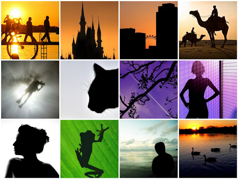 Silhouette Photo Collage