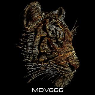 MDV666 picture