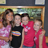 2011 - Museum of Life + Science