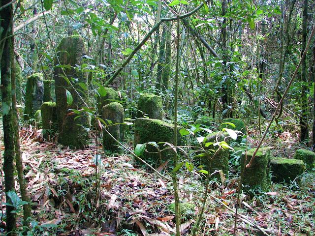 صور من مدغشقر Madagascar 14867699741