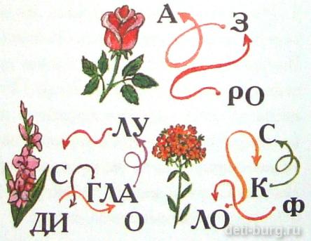 Прочитай название цветка