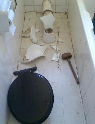 snake-toilet4