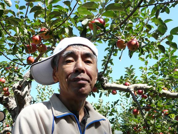 信治さんとりんごの木