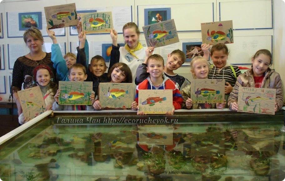 Экологическое воспитание детей, Фестиваль  науки в Институте Биологии моря, г. Владивосток