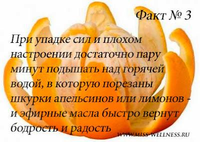 interesnie-fakti-apelsin 3