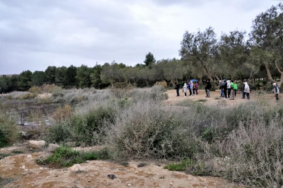 Йерухам - зеленый оазис в пустыне Негев. Экскурсия гида Светланы Фиалковой.