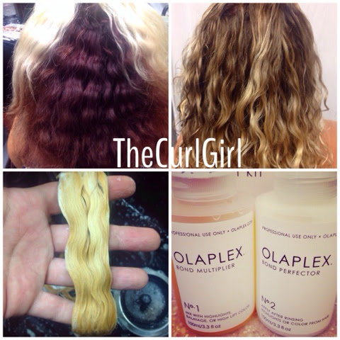 From Curly Black Hair To Blonde Using Olaplex Persian Kitty Kat