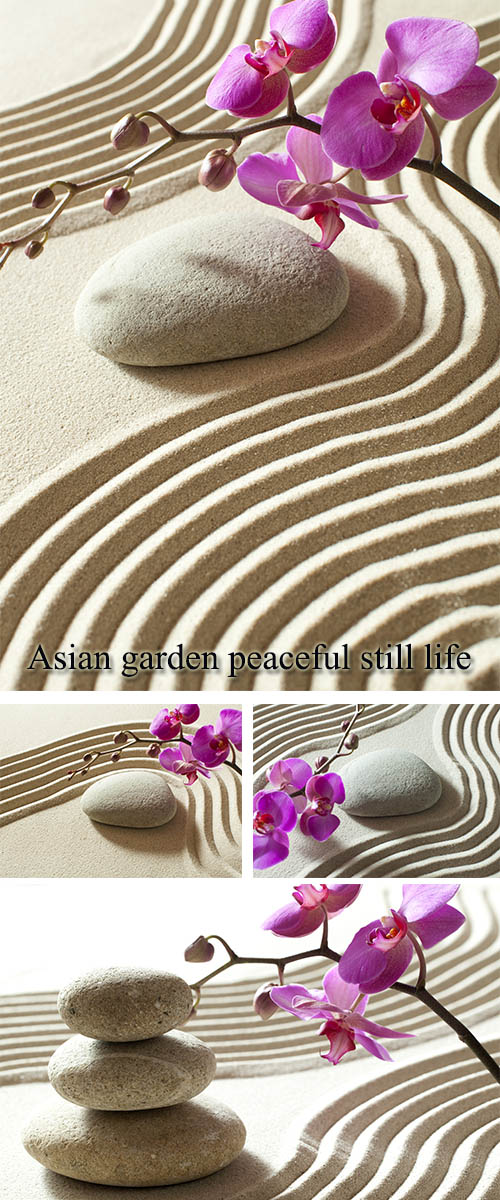 Stock Photo: Asian garden peaceful still life 4