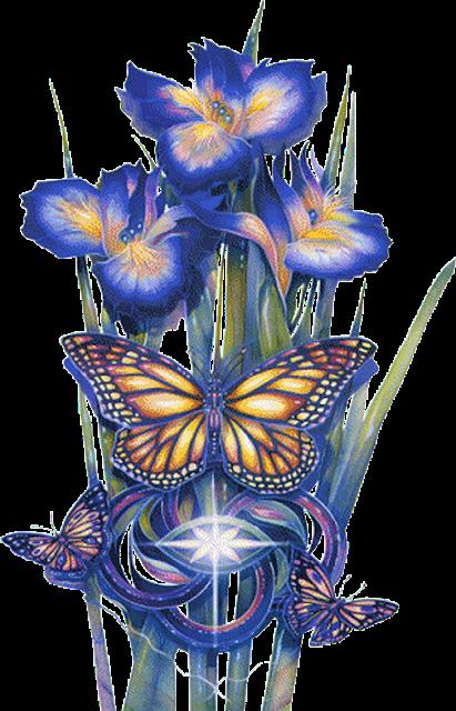 orquideas azuis