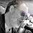 Damien Sanderson avatar image