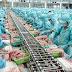 Đơn hàng chế biến thực phẩm cần 6 nam và 18 nữ làm việc tại Hokkaido Nhật Bản tháng 04/2018