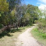 Perimeter Trail near Terrey Hills (305738)