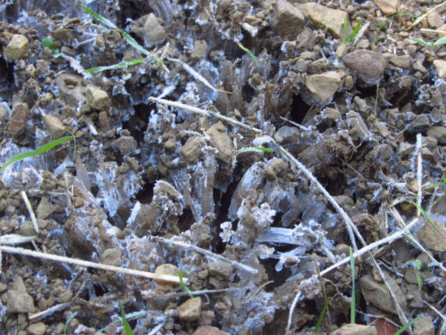 ice crystals pushing up bits of rock on the trail