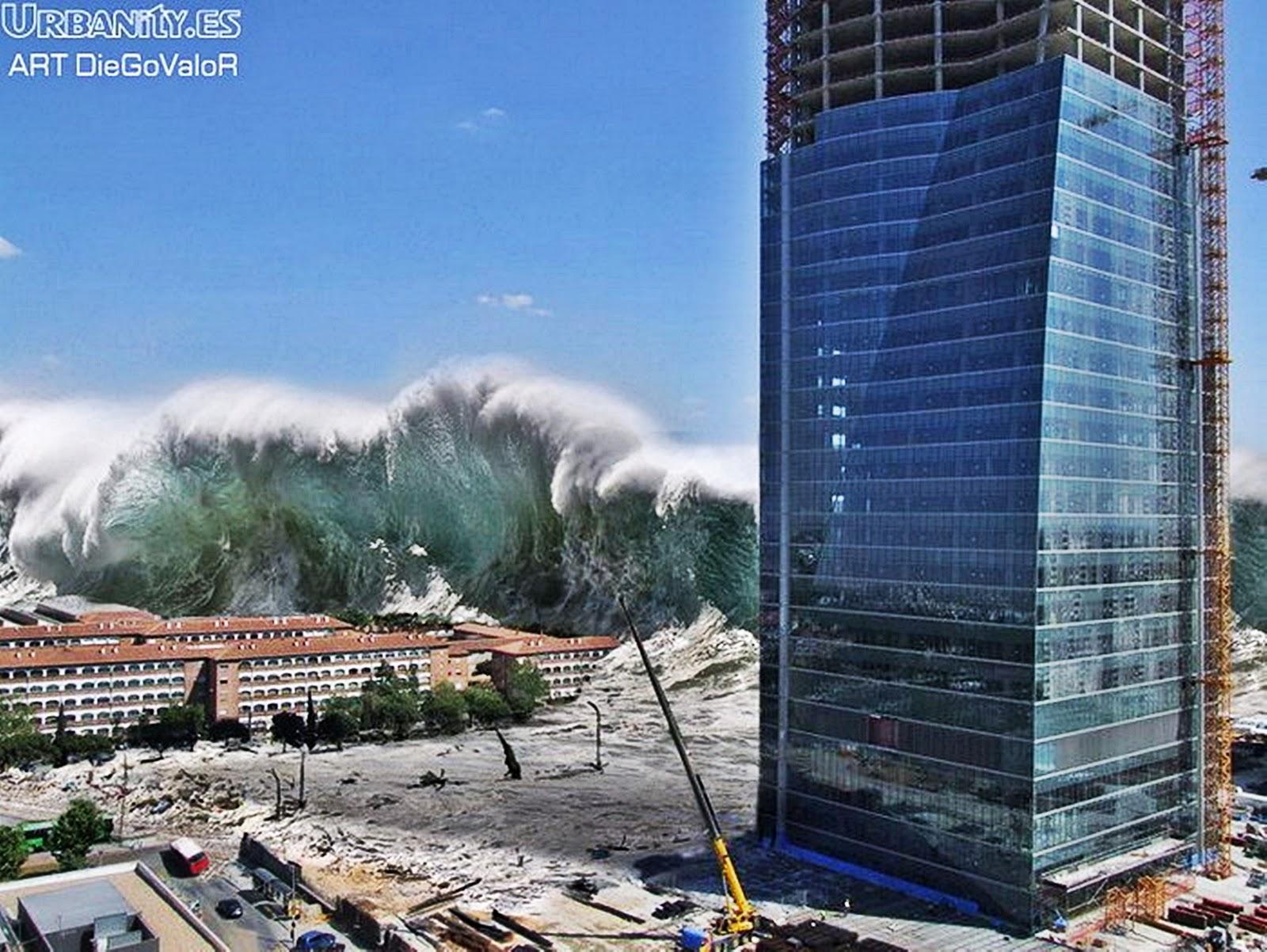 Dissertation on tsunami in thailand