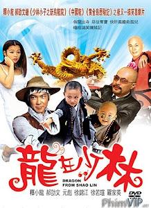 Rồng Tại Thiếu Lâm - Dragon From Shaolin poster