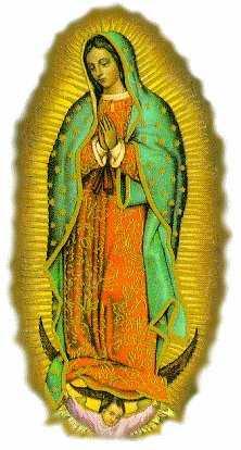 Immagine dela Vergine di Guadalupe