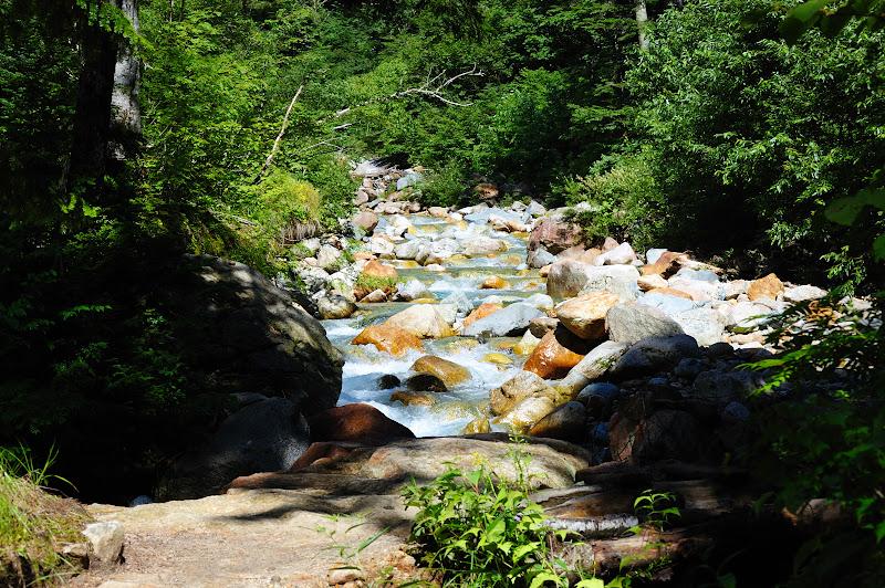 横尾から槍沢ロッジの途中の川の写真
