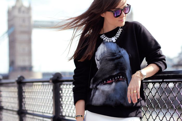 jerseis con animales